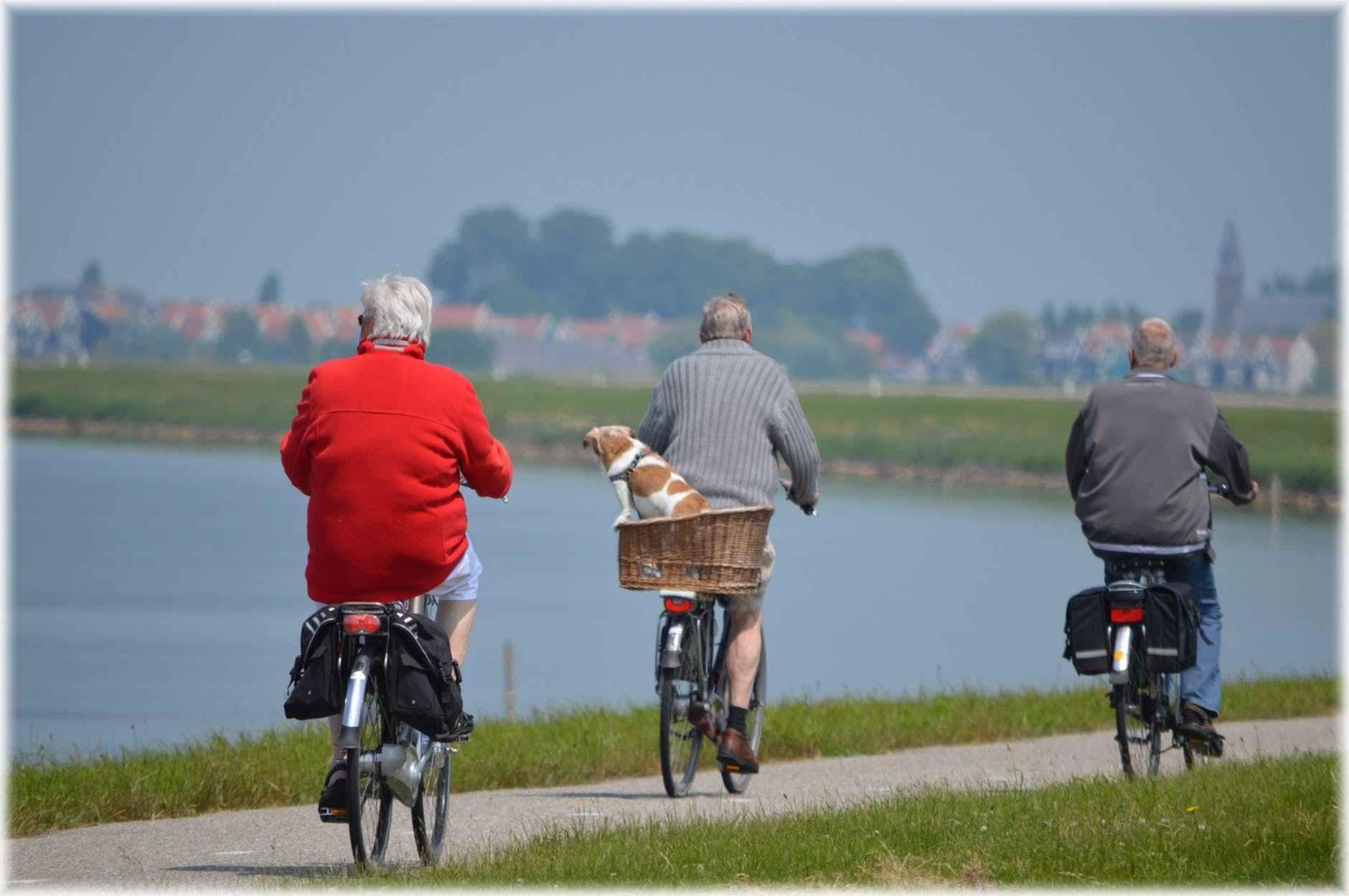 elderly people bike riding